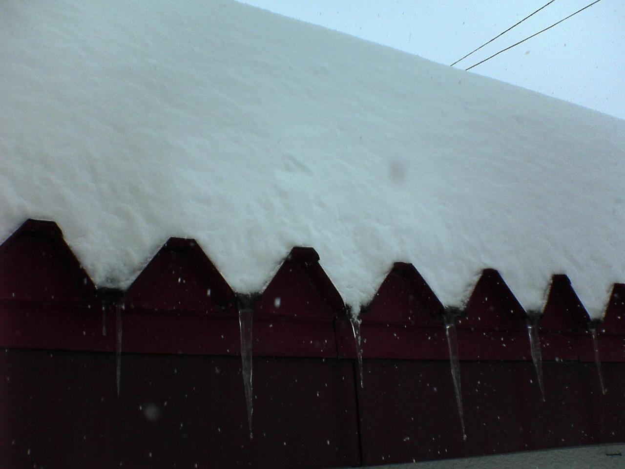 20090221大雪